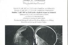 Psychedelicka-Sumava-Volary